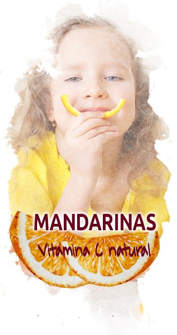 Compra mandarinas valencianas online