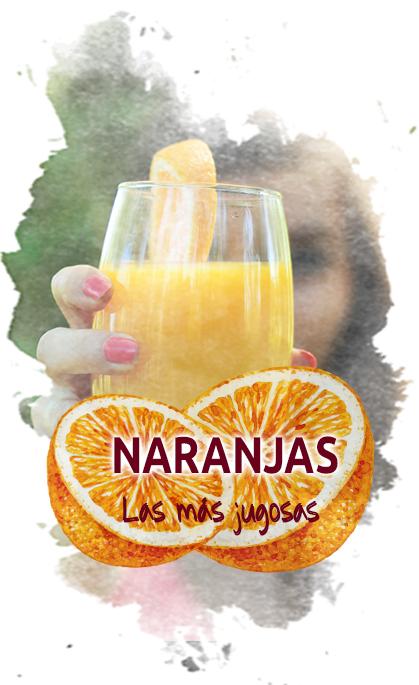 Compra naranjas valencianas online